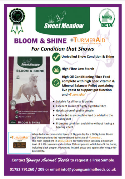 BLOOM & SHINE +TURMERAID